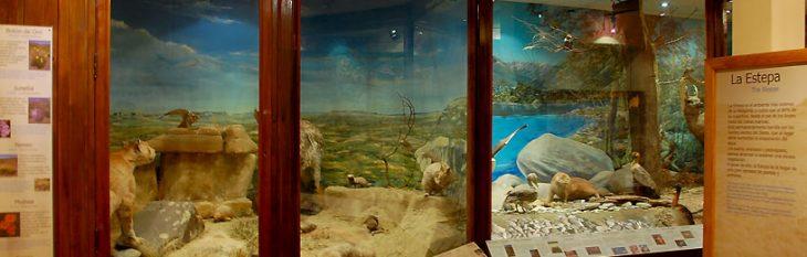 Museu da Patagônia Bariloche