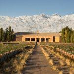 A História do Vinho na Argentina