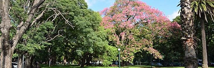 uruguai_montevideu_parque_batlle-concentrate